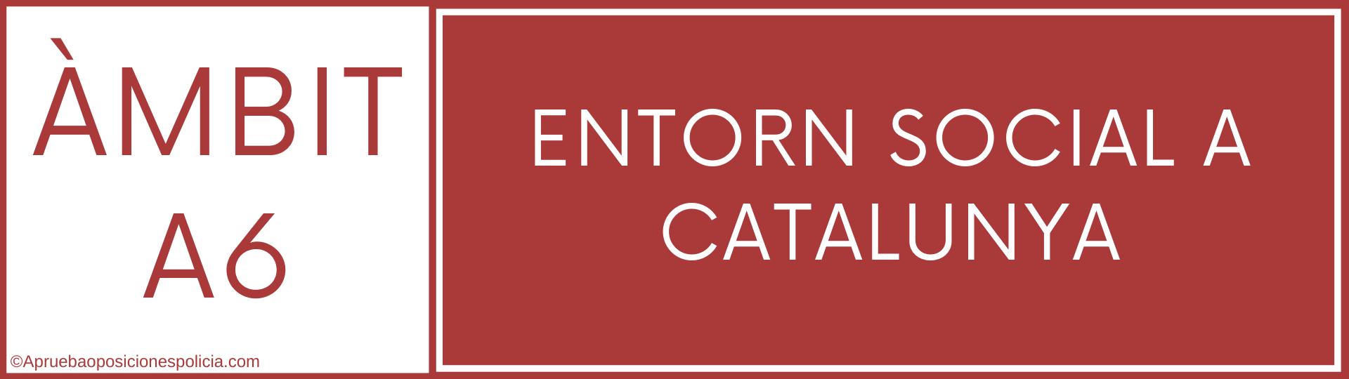 Tema A6 Mossos Entorn Social Catalunya