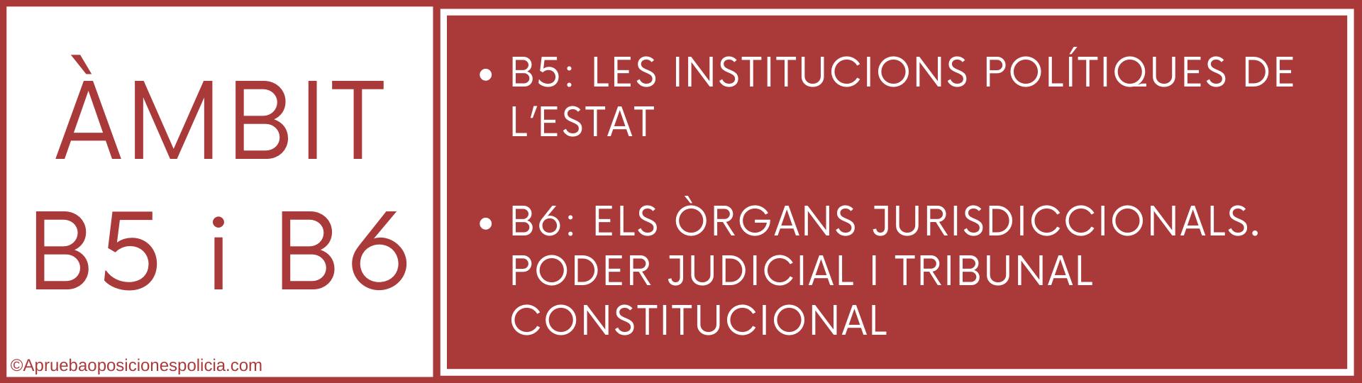 Tema b5 y b6 Mossos institucions politiques estat i organs jurisdiccionals tribunal constitucional