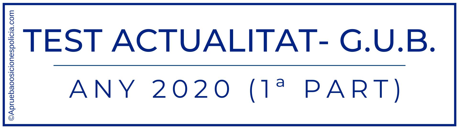 Test actualidad Gubarcelona 2020